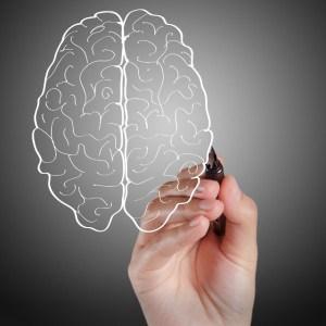 hand draws brain sign